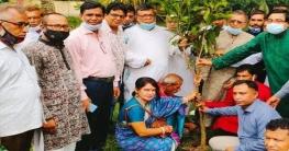 বোয়ালমারীতে কৃষক লীগের বৃক্ষরোপণ কর্মসূচি