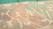 হারানো ঐতিহ্য ফেরাতে 'ঢাকাই মসলিন হাউজ' প্রতিষ্ঠা হবে রূপগঞ্জে