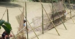 ফরিদপুরের ভূবেনশ্বর নদীর অবৈধ ১১টি বাঁধ অপসারণ করলো মৎস্য বিভাগ