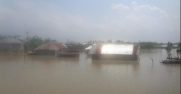 মধুমতি ও গড়াই নদীর পানি বৃদ্ধিতে মধুখালীর ১০গ্রাম প্লাবিত